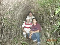 小網代の森の笹トンネル